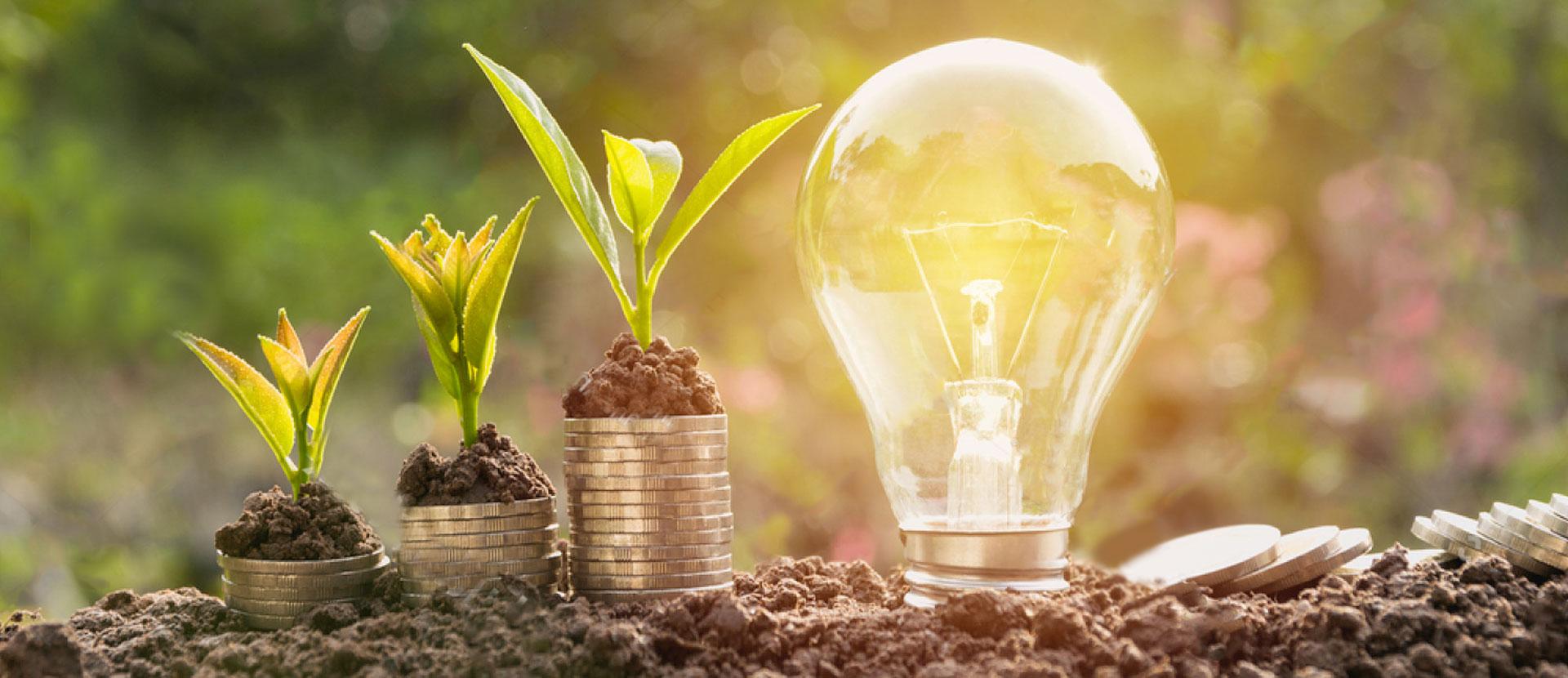 Consulting Risparmio Energetico